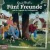 Fünf Freunde - und die Legende der Zwillingseiche (98)