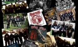 Revel In Flesh im Interview