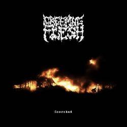 Creeping Flesh - Scorched (Demo)