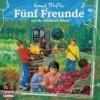 Fünf Freunde - und die verbotenen Blüten (86)