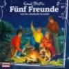 Fünf Freunde - und das rätselfahte Sternbild (87)
