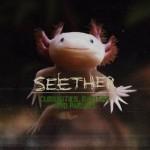 Seether - Curiosities, Rarities And Pariahs