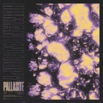 Human Entropy - Pallasite (EP)
